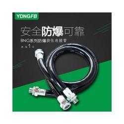 NGB系列防爆挠性连接管 防爆配电箱
