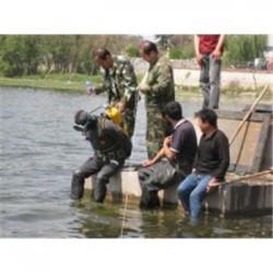 邯郸市水下探摸公司《蛙人探摸》
