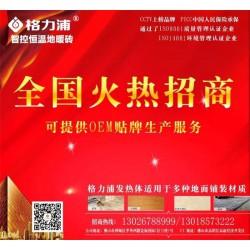 电热砖品牌、格力浦、安徽泗县电热砖