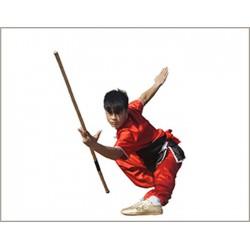 西北武术院(图),太极拳培训中心,太极拳培训