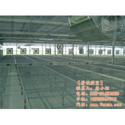 芳诚温室大棚工程公司|温室大棚|开平温室大