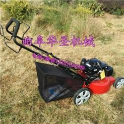 汽油修剪草坪机 草坪修剪机 割草机价格