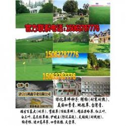 贵州消防泵_千奥泵业_贵州多级消防泵