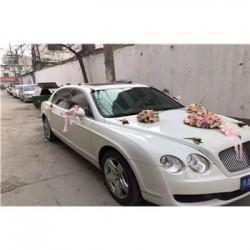 婚庆公司租车加盟