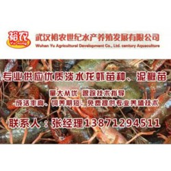 那里可购到虾苗_武汉裕农_贵州那里可购到虾