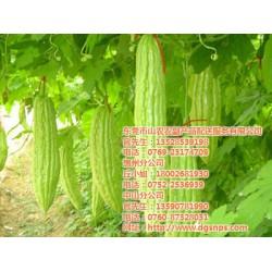 东莞送菜公司的价格|山农农副产品配送|东莞