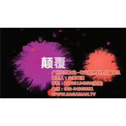 视频制作费用同行比价格低,广州传世文化,萝