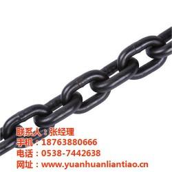 优质起重链条,起重链条,鑫洲机械(图)