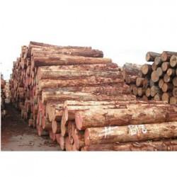 东兰松木收购企业一览表