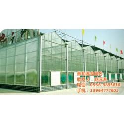 太阳能温室大棚|鑫和温室园艺|岚山区太阳能