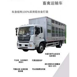 专用拉猪车拉大猪运输车物流畜禽价格