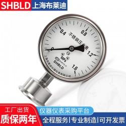 Y100BTZSRMF(316)7a1MPA布莱迪隔膜压力表