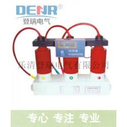 登瑞电气TBP-B-12.7/131-J过电压保护器性能优点