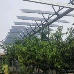 广东晶天太阳能光伏板300W瓦72片林光互补太阳能电池组件