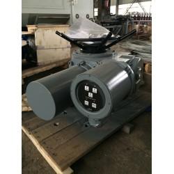 DZW30-24-A00-WK控制阀电动头