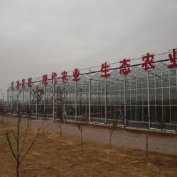 山东温室大棚建设厂家、智能温室设计安装、玻璃大棚房生产厂家