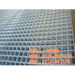 中泽丝网(图)、不锈钢网片生产厂家、不锈钢