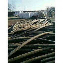 大庆市肇州县电线电缆回收上门回收