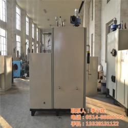 锅炉 锅炉生产 华飞新能源(优质商家)