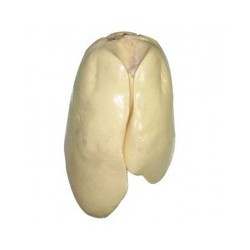 天然有机法式鹅肝_价位合理的鹅肥肝推荐